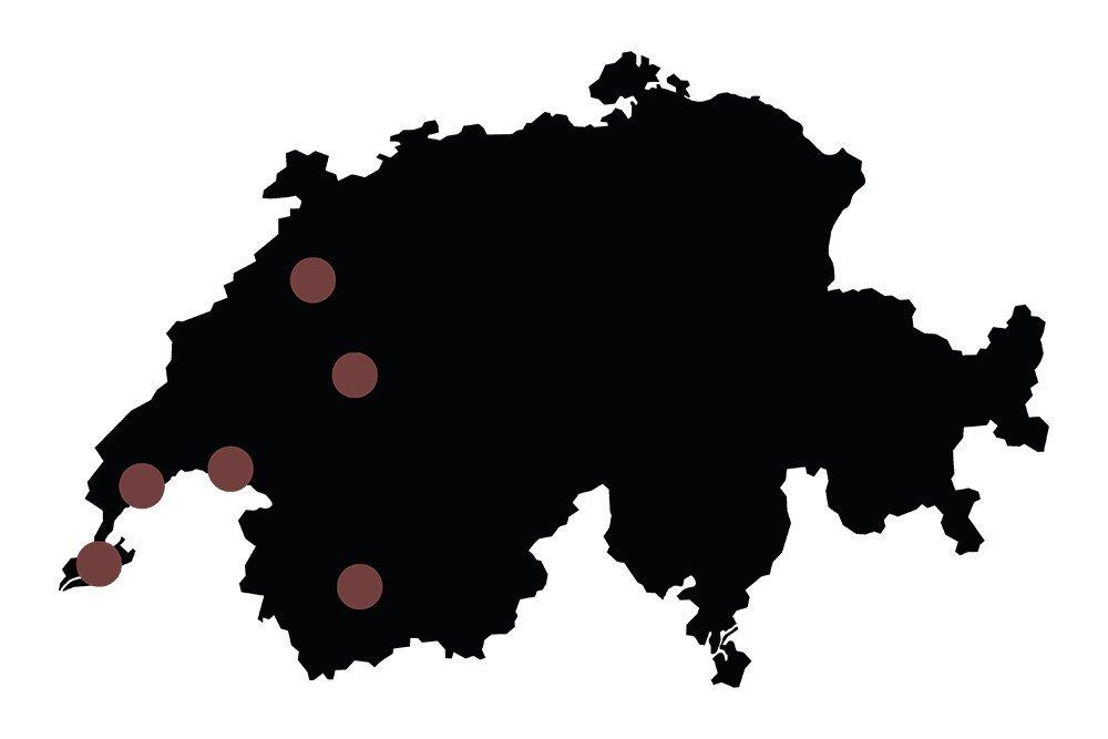 Carte de la suisse tout en noir avec des ronds symbolisant les emplacements des Masculin Center